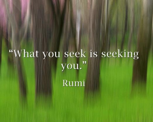 what-you-seek-is-seeking-you