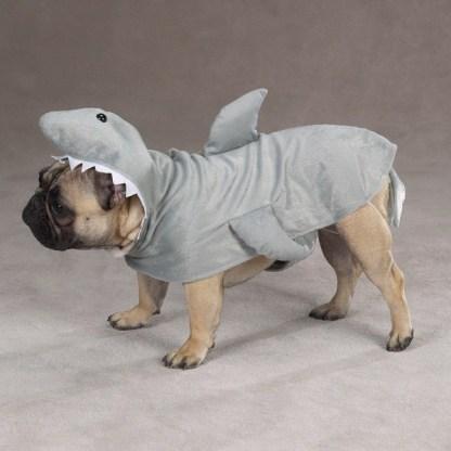 pug-costumes-067