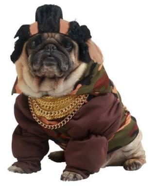 pug-costumes-091